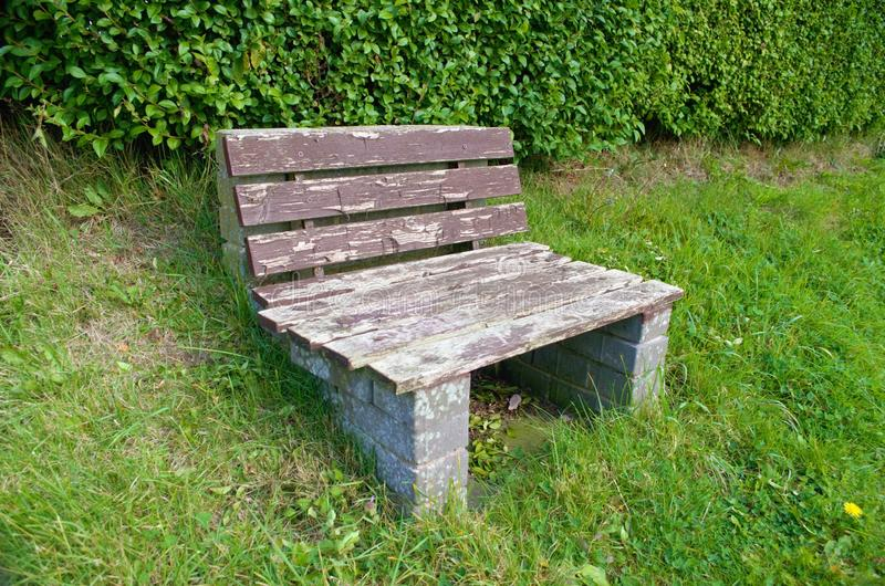Single seat park bench set on a green grass slope. Grass slope with a hedgerow background containing a single bench seat stock photography