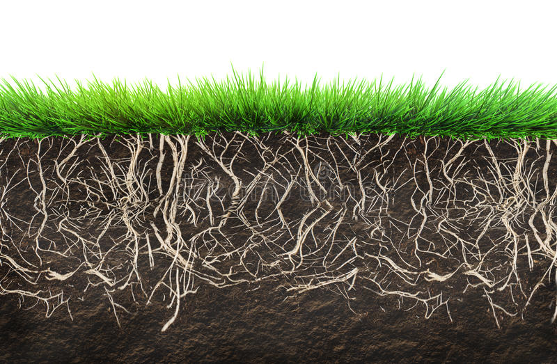 Grass and soil royalty free illustration