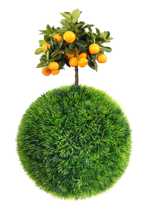 Download Grass Sphere And Tree Stock Photos - Image: 23071023