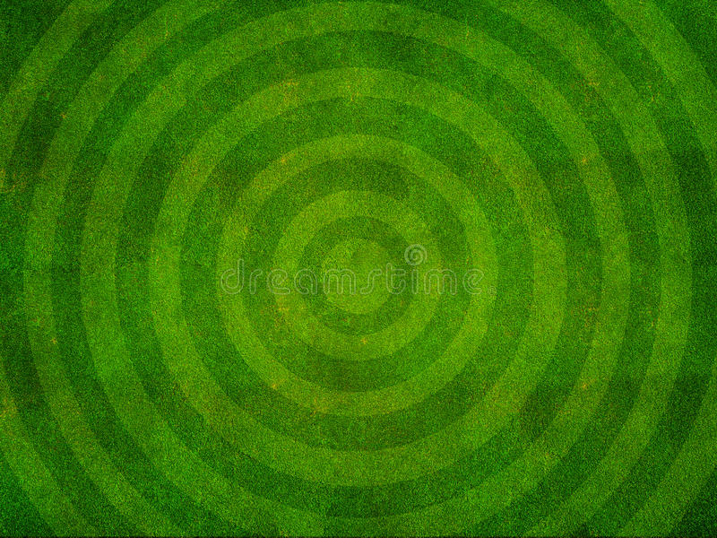 Grass Sports Field Top View royalty free stock image