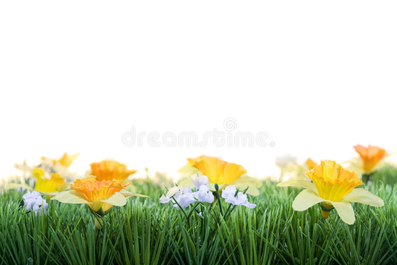 Grass with spring flowers stock images