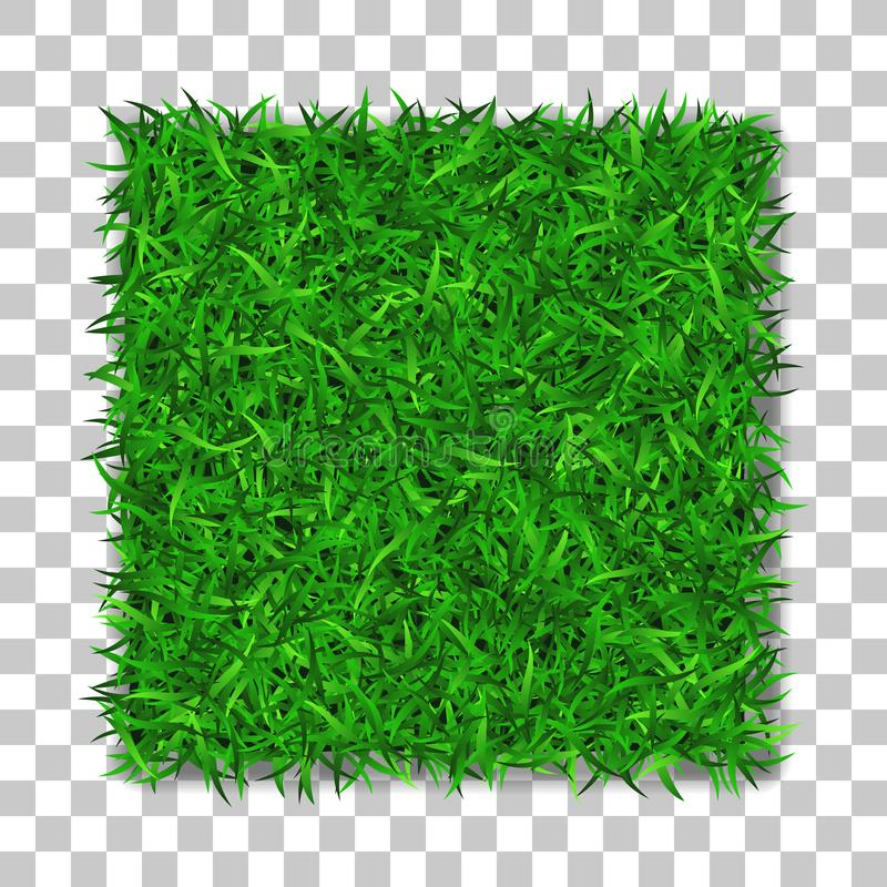 Grass square 3D. Beautiful green grassy field, isolated on white transparent background. Lawn abstract nature texture royalty free illustration