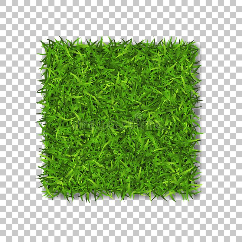 Grass square 3D. Beautiful green grassy field, isolated on white transparent background. Lawn abstract nature texture stock illustration