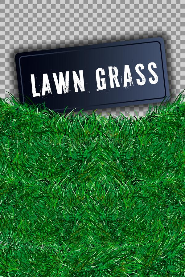Grass square 3D. Beautiful green grassy field, isolated on white transparent background. Lawn abstract nature texture. Symbol. Grass square 3D. Beautiful green royalty free illustration