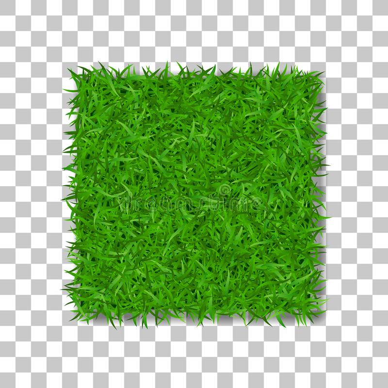 Grass square 3D. Beautiful green grassy field, on white transparent background. Lawn abstract nature texture. Symbol natural, fresh, meadow plant, spring or stock illustration