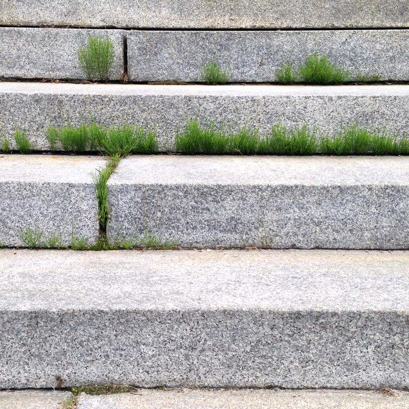 Grass between steps. Grass grow between the steps of a stairs. Nature takes over stock photo