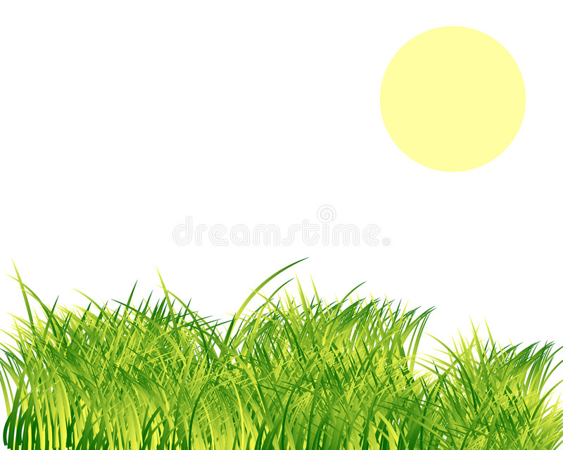 Download Grass and sun stock vector. Image of agriculture, herb - 8227641