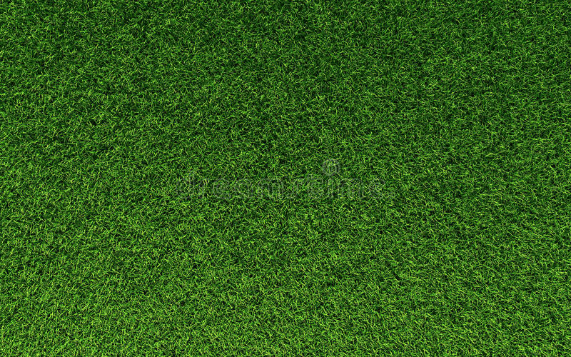 Download Grass Texture stock image. Image of lawn, golf, soccer - 14139681