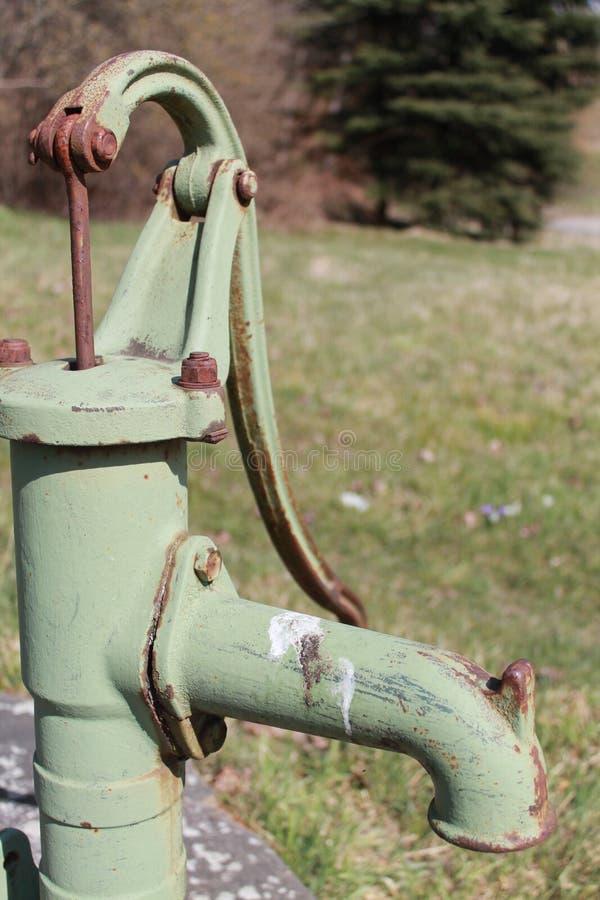 Grass, Tree Free Public Domain Cc0 Image