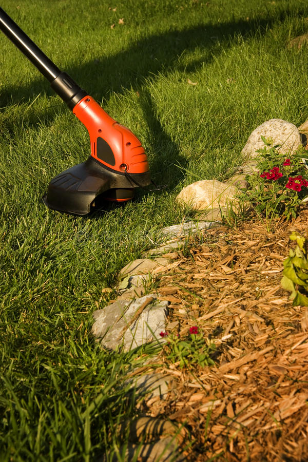 Download Grass Trimmer stock photo. Image of line, green, landscaping - 10756124