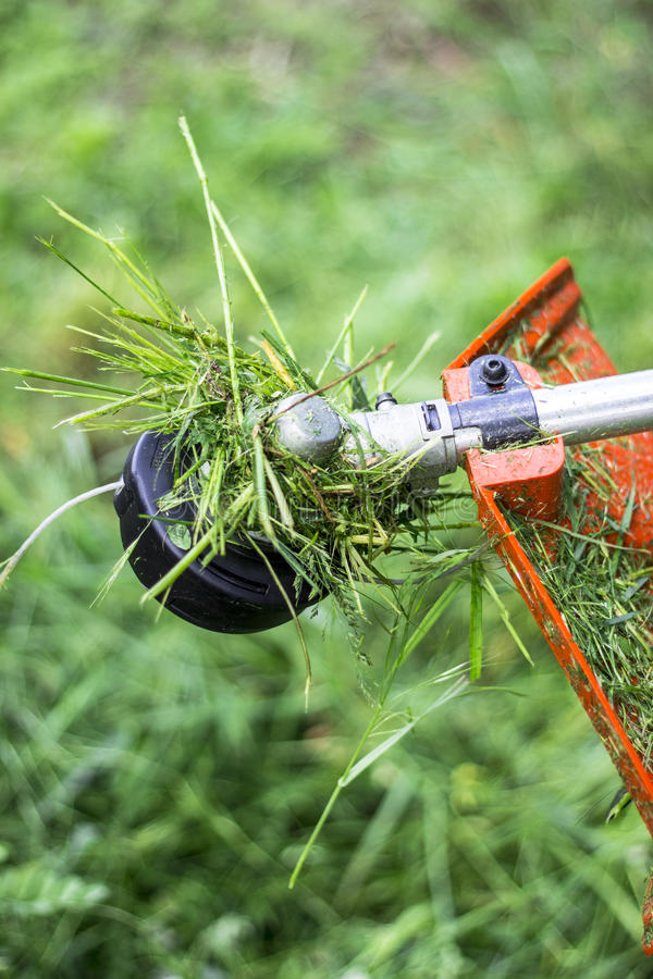 Grass trimmer head. In use, trimmer iarba, mow cutter stock images