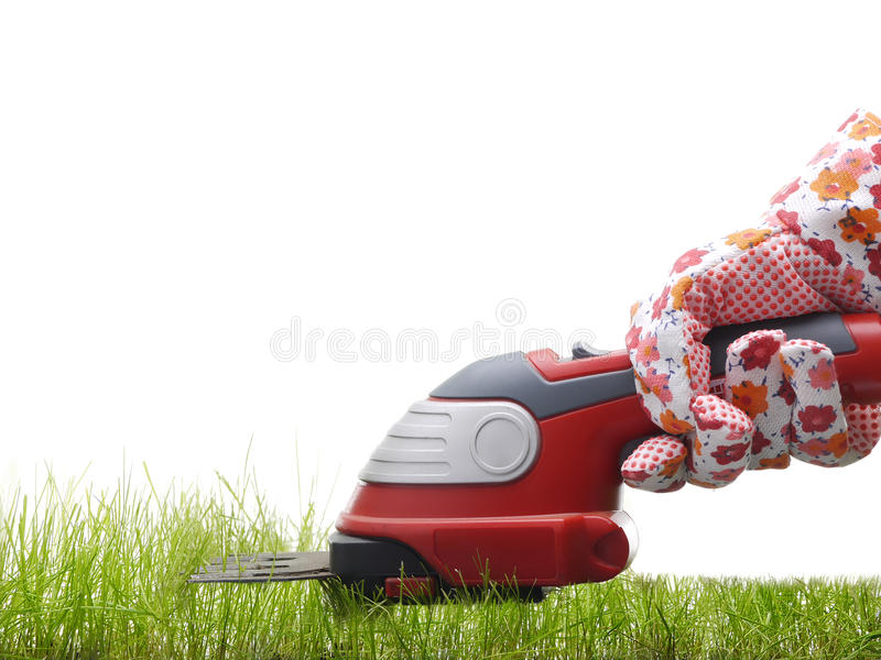 Download Grass trimming stock photo. Image of glove, background - 24395774