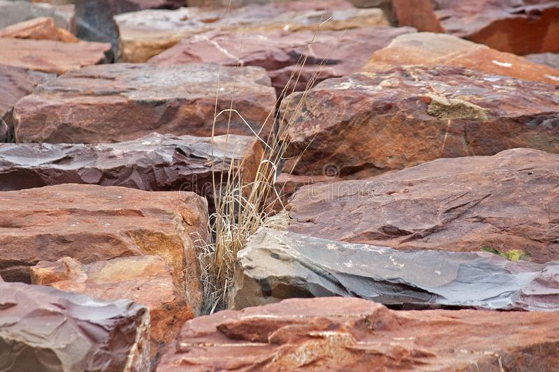 GRASS TUFT BETWEEN LARGE ROCKS. Large red rocks with tuft of grass growing between them royalty free stock photos