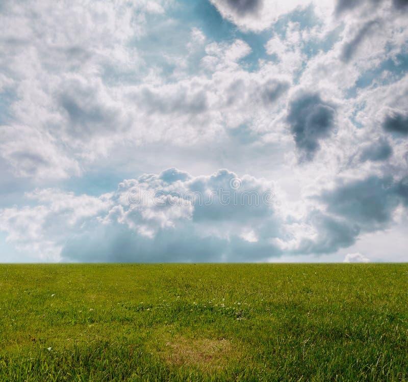 Grass under blue sky royalty free illustration