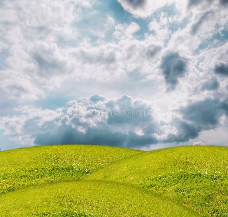 Grass under blue sky stock illustration
