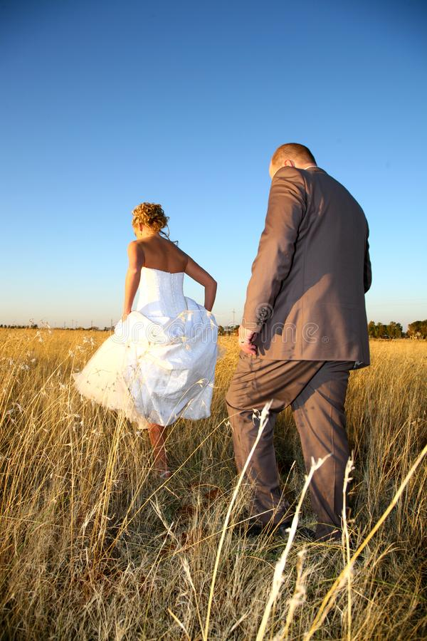 Download Grass walking stock photo. Image of bride, holding, dress - 1140496