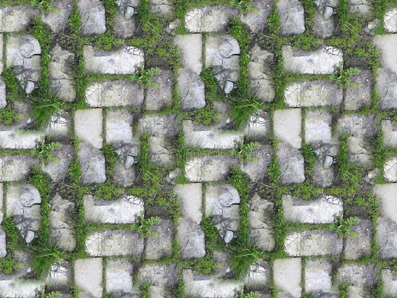 Of grass in a wall of white bricks. Seamless texture of grass in a wall of white bricks stock photography