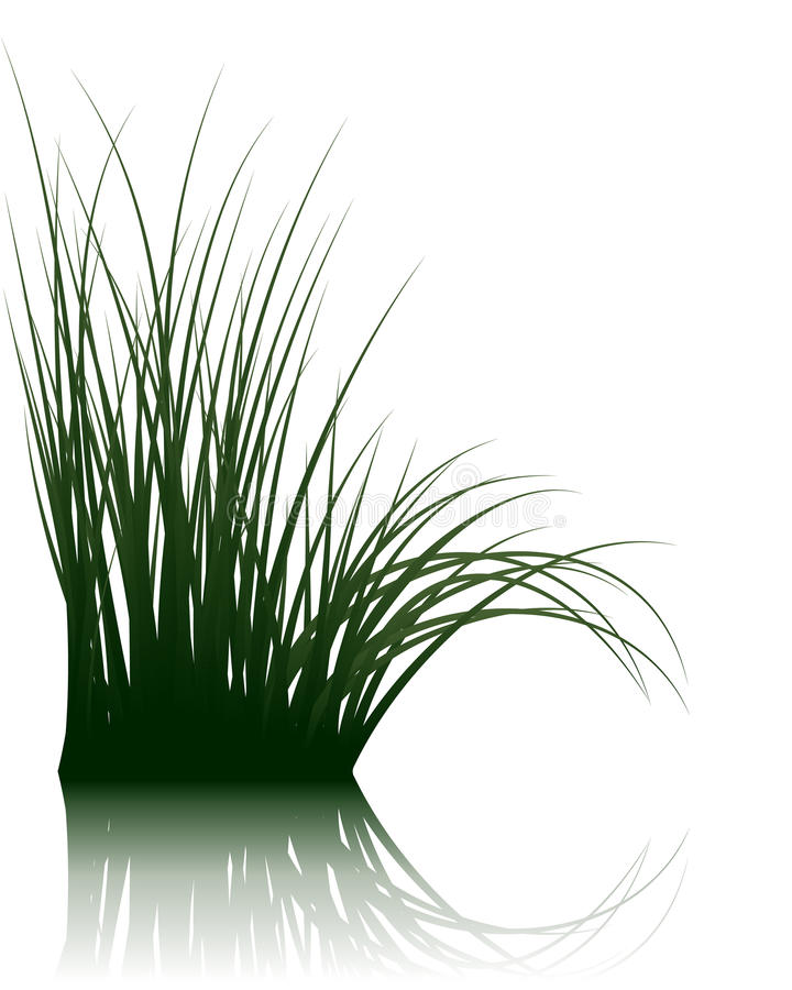 Grass on water royalty free illustration