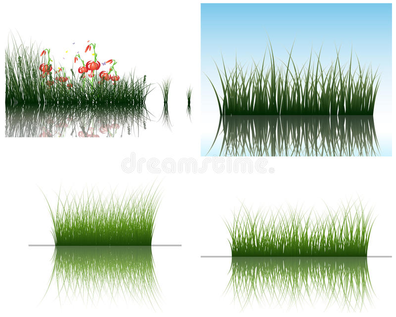Grass on water stock image