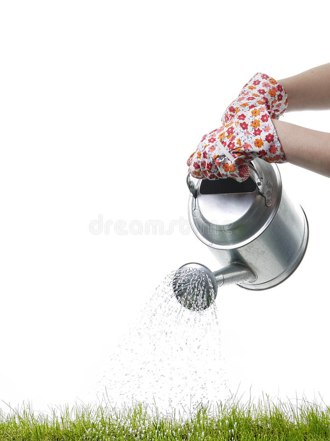 Download Grass watering stock photo. Image of glove, pouring, spring - 24483142