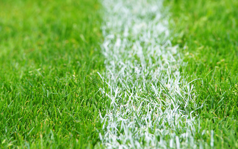Grass with white line stock photography