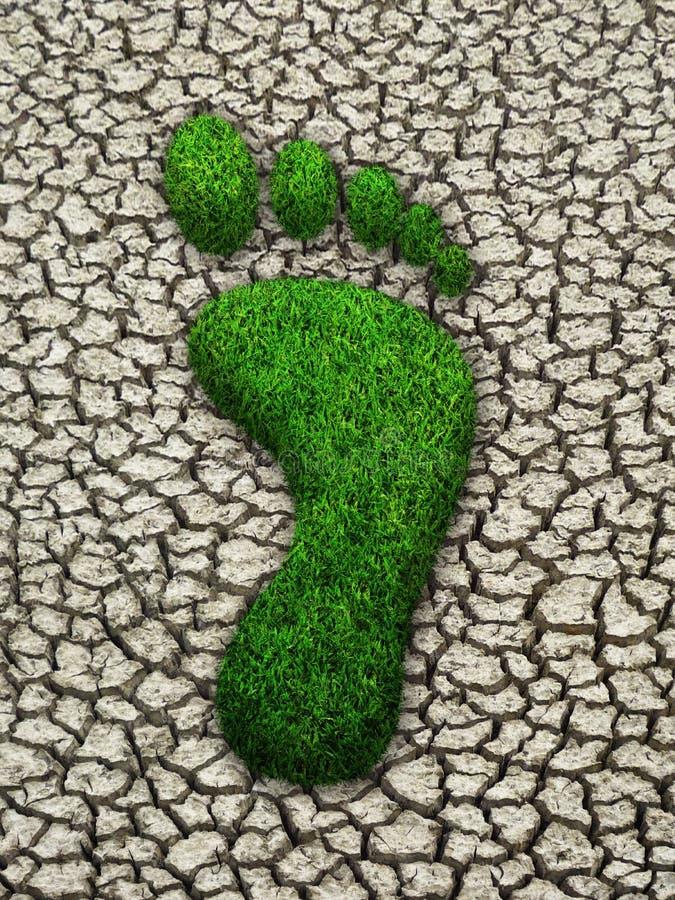 Grasschritt auf gebrochener Erde lizenzfreies stockbild