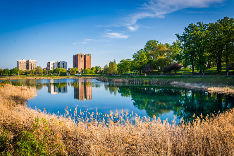 Grasses and buildings along Druid Lake, at Druid Hill Park, Baltimore, Maryland. stock photography