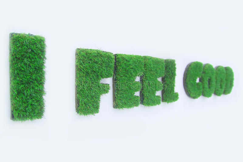Grasses that grow in the word of i feel good stock image