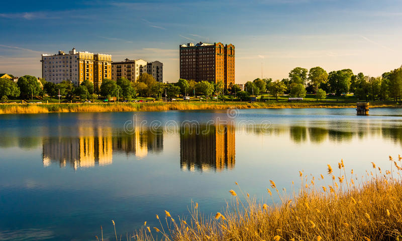 Grasses and reflections in Druid Lake, at Druid Hill Park, Baltimore, Maryland. stock images