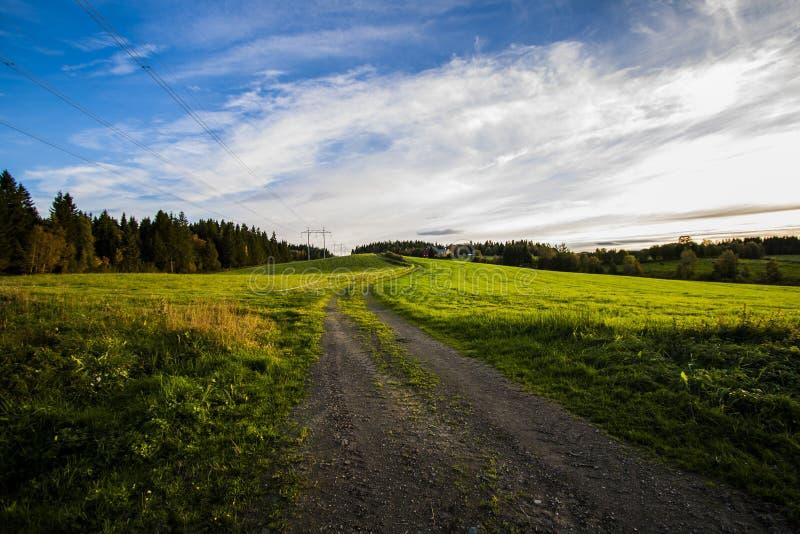 Grassfield arkivfoto