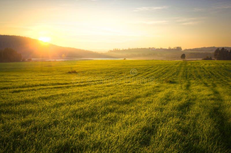 Grassfield y montañas en la puesta del sol imagen de archivo