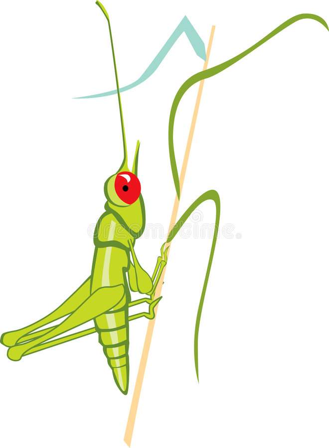 Download Grasshopper stock illustration. Image of food, fantasy - 3789905
