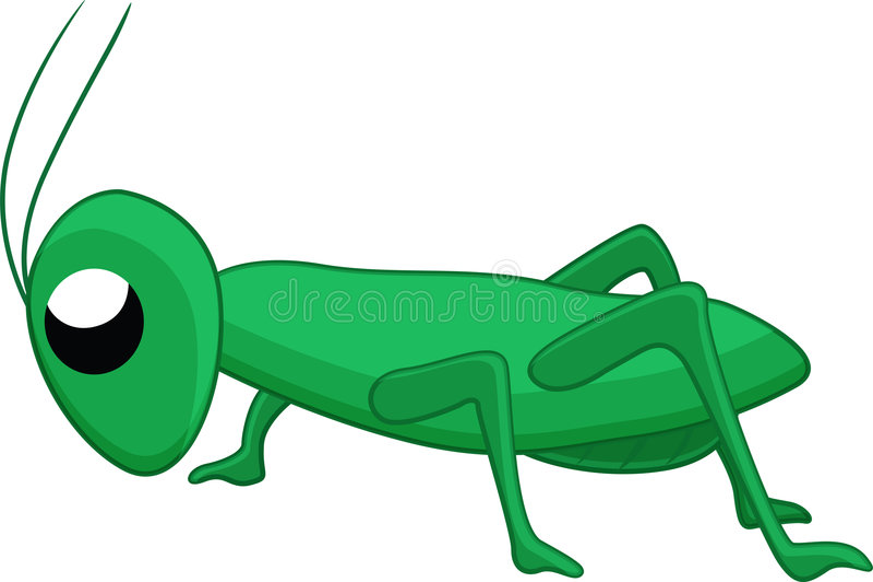Grasshopper. An illustration of a grasshopper royalty free illustration