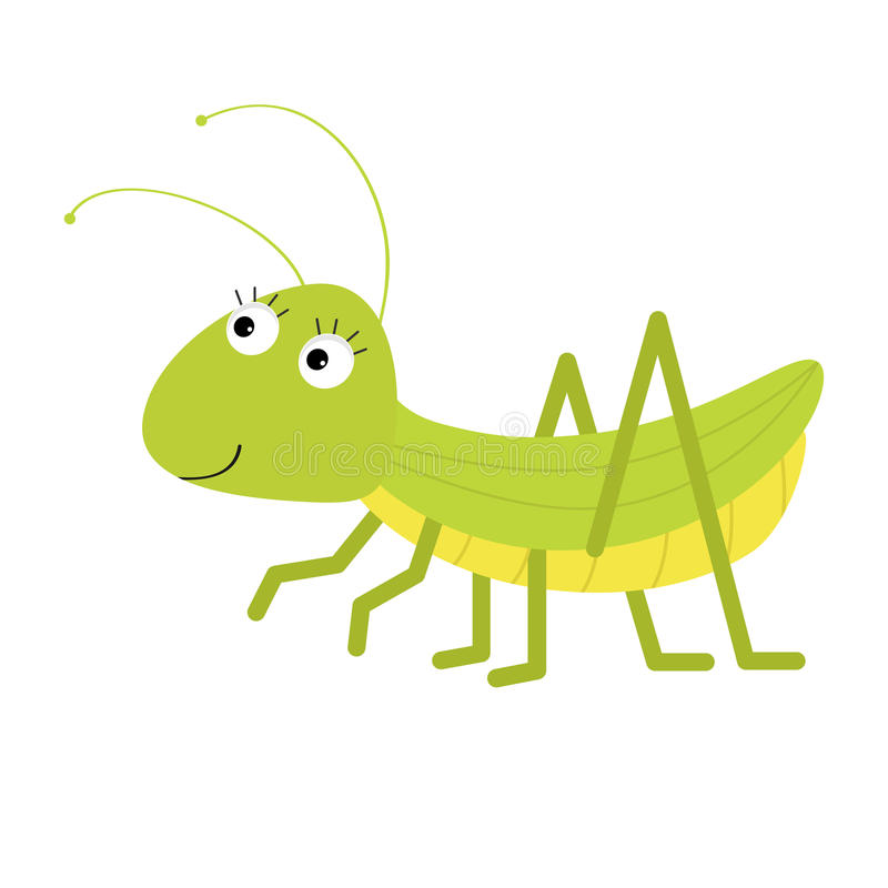Grasshopper. Cute cartoon character. White background. . Baby insect collection. Flat design. vector illustration
