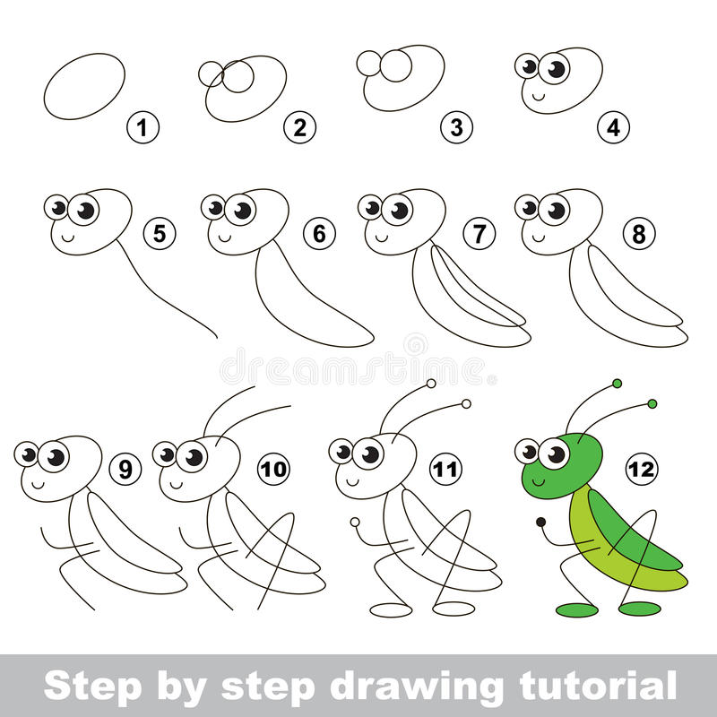 Download grasshopper drawing tutorial stock vector illustration of skill illustration 79673739