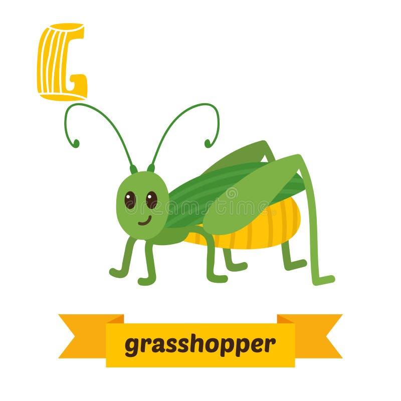 Grasshopper. G letter. Cute children animal alphabet in vector. Funny cartoon animals. Vector illustration stock illustration