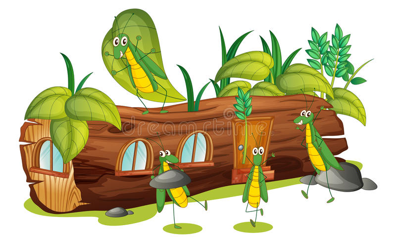 Grasshoppers and a wood house royalty free illustration