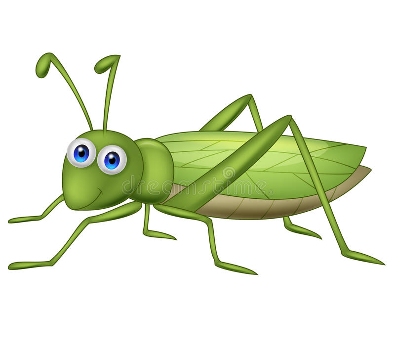 Grasshoppher kreskówka ilustracja wektor