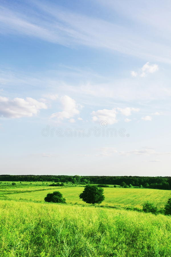 Download Grassland stock image. Image of mountains, hills, meadow - 10621993