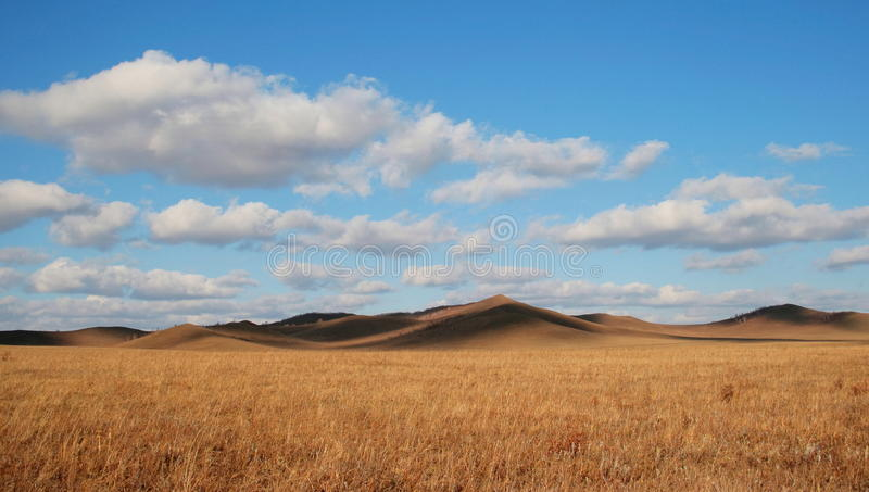 Grassland. The fall of the Mongolian grassland steppe royalty free stock images