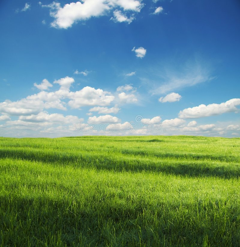 Download Grassland Royalty Free Stock Photos - Image: 2675218