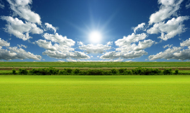Grassland on the basis Landscape stock photography