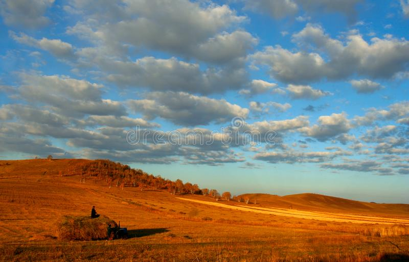 Grassland Of China Free Stock Photography