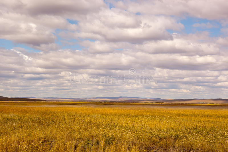 Download Grassland and cloudscape stock photo. Image of cloudscape - 21549704
