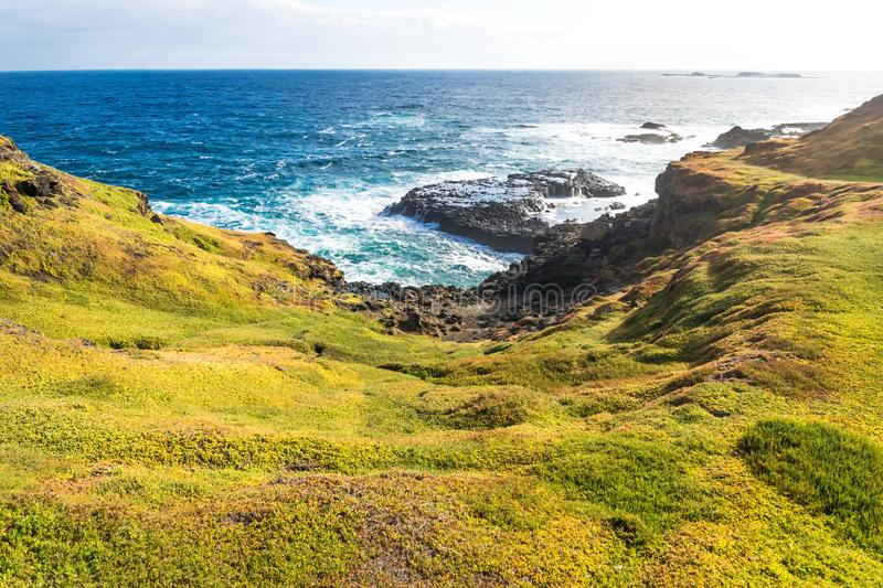 Grassland and coast at the Nobbies at Phillip Island, Victoria, Australia royalty free stock photo
