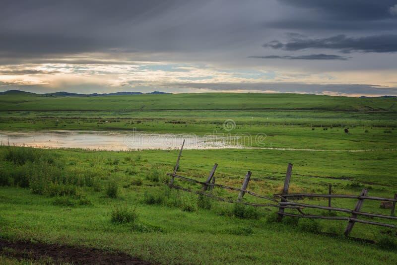 Grassland at Dust. It`s in Hulunbiur grassland, inner Mongolia, China royalty free stock photo