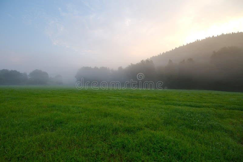 Grassland, Field, Sky, Pasture Free Public Domain Cc0 Image