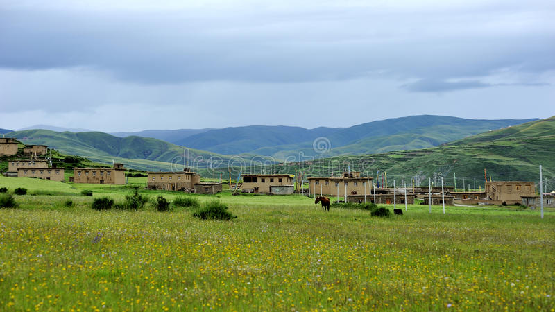 Download Grassland And Flower Under Cloudy Sky Stock Photo - Image: 25870356