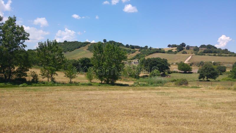 Grassland, Pasture, Sky, Field Free Public Domain Cc0 Image