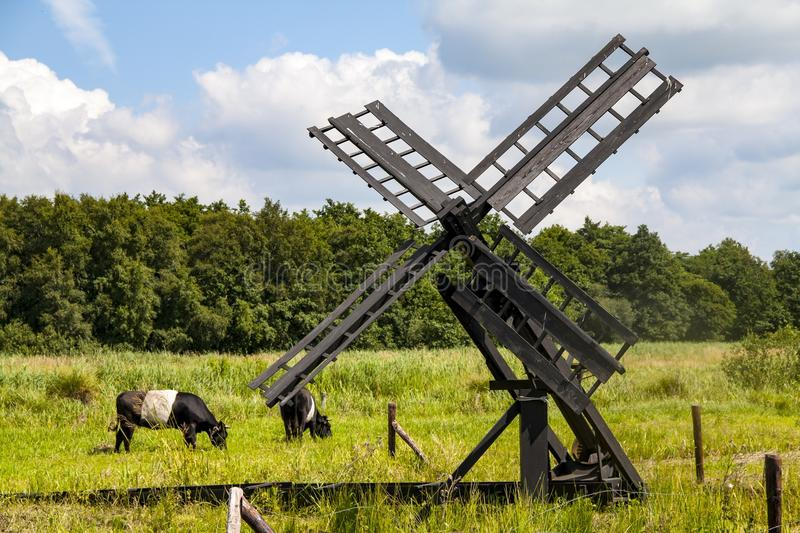 Grassland, Pasture, Windmill, Field stock images